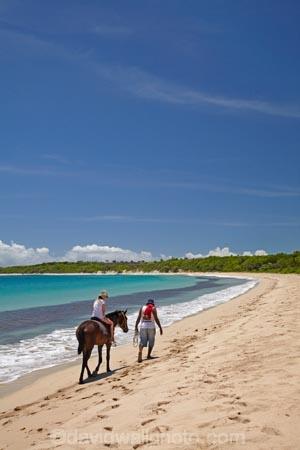 aqua;aquamarine;beach;beaches;blue;child;children;clean-water;clear-water;coast;coastal;coastline;coastlines;coasts;cobalt-blue;cobalt-ultramarine;cobaltultramarine;Coral-Coast;equestrian;family-holiday;family-holidays;family-vacation;family-vacations;Fij;Fiji;Fiji-Islands;foreshore;girl;girls;holiday;holidays;horse;horse-rider;horse-riders;horse-riding;horses;kid;kids;Natadola;Natadola-Beach;Natadola-Harbor;Natadola-Harbour;ocean;oceans;Pacific;Pacific-Ocean;paradise;people;person;sand;sandy;sea;seas;shore;shoreline;South-Pacific;surf;teal-blue;tourism;tourist;tourists;tropical-island;tropical-islands;turquoise;vacation;vacations;Viti-Levu;wave;waves