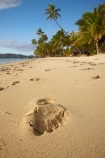beach;beaches;coast;coastal;coastline;coastlines;coasts;Fij;Fiji;Fiji-Islands;footprint;footprints;foreshore;holiday;holiday-resort;holiday-resorts;holidays;Malolo-Lailai-Is;Malolo-Lailai-Island;Malololailai-Is;Malololailai-Island;Mamanuca-Group;Mamanuca-Is;Mamanuca-Island-Group;Mamanuca-Islands;Mamanucas;ocean;Pacific;Pacific-Island;Pacific-Islands;palm;palm-tree;palm-trees;palms;paradise;Plantation-Is;Plantation-Is-Resort;Plantation-Island;Plantation-Island-Resort;resort;resort-hotel;resort-hotels;resorts;sand;sandy;sea;shore;shoreline;shorelines;shores;South-Pacific;tropical-island;tropical-islands;vacation;vacations;water