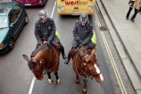 Britain;brown-horse;brown-horses;chestnut-horse;chestnut-horses;England;equestrian;equine;Europe;G.B.;GB;Great-Britain;horse;horse-police;horse-riding;horses;London;Metropolitan-Police;Mounted-Branch;mounted-police;pc;police;police-constable;policeman;policemen;policewoman;policewomen;street-scene;street-scenes;U.K.;UK;United-Kingdom;wpc