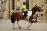 3922;britain;brown-horse;brown-horses;chestnut-horse;chestnut-horses;EC4;england;equestrian;equine;Europe;G.B.;GB;great-britain;horse;horse-police;horse-riding;horses;Inner-Temple;Inns-of-Court;kingdom;london;Metropolitan-Police;Mounted-Branch;mounted-police;pc;police;police-constable;policewoman;policewomen;Temple-Church;The-City-of-London;The-Honourable-Society-of-the-Inner-Temple;U.K.;uk;united;United-Kingdom;wpc