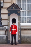 Bearskin-hat;Bearskin-hats;britain;British-Army;Buckingham-Palace;ceremonial;ceremony;england;Europe;Foot-Guard;G.B.;GB;great-britain;guard;guard-box;guard-boxes;guardbox;guardboxes;guards;infantry;kingdom;london;military;o8l4785;palace-guard;palace-guards;Queens-Guard;Queens-Life-Guard;Queens-guards;soldier;soldiers;U.K.;uk;uniform;uniforms;united;United-Kingdom