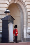 Bearskin-hat;Bearskin-hats;britain;British-Army;Buckingham-Palace;ceremonial;ceremony;england;Europe;Foot-Guard;G.B.;GB;great-britain;guard;guard-box;guard-boxes;guardbox;guardboxes;guards;infantry;kingdom;london;military;o8l4789;palace-guard;palace-guards;Queens-Guard;Queens-Life-Guard;Queens-guards;soldier;soldiers;U.K.;uk;uniform;uniforms;united;United-Kingdom
