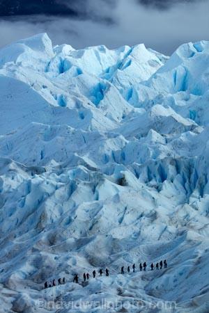 adventure-travel;Argentina;Argentine-Patagonia;Argentine-Republic;cold;crevasse;crevasses;Glaciar-Perito-Moreno;glacier;glacier-hiking;Glacier-National-Park;glacier-trekking;glaciers;Heilo-amp;-Aventura;Hielo-and-Aventura;hiker;hikers;ice;ice-hiking;ice-trekking;icefield;icefields;icy;Latin-America;Los-Glaciares;Los-Glaciares-N.P.;Los-Glaciares-National-Park;Los-Glaciares-NP;national-park;national-parks;NP;park;parks;Parque-Nacional-Los-Glaciares;Patagonia;Patagonian;people;Perito-Moreno;Perito-Moreno-Glacier;person;Santa-Cruz-Province;South-America;South-Argentina;Southern-Argentina;Sth-America;tourism;tourist;tourists;travel;trekker;trekkers;UN-world-heritage-area;UN-world-heritage-site;UNESCO-World-Heritage-area;UNESCO-World-Heritage-Site;united-nations-world-heritage-area;united-nations-world-heritage-site;walker;walkers;world-heritage;world-heritage-area;world-heritage-areas;World-Heritage-Park;World-Heritage-site;World-Heritage-Sites