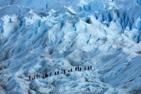adventure-travel;Argentina;Argentine-Patagonia;Argentine-Republic;blue-ice;cold;crevasse;crevasses;Glaciar-Perito-Moreno;glacier;glacier-hiking;Glacier-National-Park;glacier-trekking;glaciers;Heilo-Aventura;Hielo-and-Aventura;hiker;hikers;ice;ice-hiking;ice-trekking;icefield;icefields;icy;Latin-America;Los-Glaciares;Los-Glaciares-N.P.;Los-Glaciares-National-Park;Los-Glaciares-NP;national-park;national-parks;NP;park;parks;Parque-Nacional-Los-Glaciares;Patagonia;Patagonian;people;Perito-Moreno;Perito-Moreno-Glacier;person;Santa-Cruz-Province;South-America;South-Argentina;Southern-Argentina;Sth-America;tourism;tourist;tourists;travel;trekker;trekkers;UN-world-heritage-area;UN-world-heritage-site;UNESCO-World-Heritage-area;UNESCO-World-Heritage-Site;united-nations-world-heritage-area;united-nations-world-heritage-site;walker;walkers;world-heritage;world-heritage-area;world-heritage-areas;World-Heritage-Park;World-Heritage-site;World-Heritage-Sites