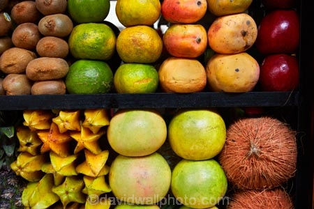 Bolivia;capital;Capital-of-Bolivia;Carambola;Chuqi-Yapu;coconut;coconuts;colorful;colour;colourful;commerce;commercial;exotic-fruit;farmer-market;farmer-markets;farmers-market;farmers-markets;farmers-market;farmers-markets;food;food-market;food-markets;food-stall;food-stalls;fruit;fruit-and-vegetables;fruit-juce-stalls;fruit-juice-stall;fruit-market;fruit-markets;fruit-stall;healthy-food;kiwi;kiwifruit;kiwis;La-Paz;Lanza-Market;Latin-America;mango;mangoes;market;market-place;market_place;marketplace;markets;melon;melons;Mercado-Lanza;Nuestra-Señora-de-La-Paz;orange;oranges;produce;produce-market;produce-markets;product;products;retail;retailer;retailers;shop;shopping;shops;South-America;stall;stalls;Star-Fruit;steet-scene;Sth-America;street-scenes;The-Americas
