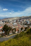 accommodation;apartment;apartments;Bolivia;capital;Capital-of-Bolivia;Chuqi-Yapu;cities;city;cityscape;cityscapes;condo;condominium;condominiums;condos;flower;flowers;high-density-housing;house;houses;housing;Killi-Killi-Lookout;Killi-Killi-Viewpoint;La-Paz;Latin-America;lookout;lookouts;Mirador-Killi-Killi;Nuestra-Señora-de-La-Paz;residence;residences;Sopocachi;Sopocachi-District;South-America;Sth-America;The-Americas;view;viewpoint;viewpoints;views;yellow;yellow-flower;yellow-flowers