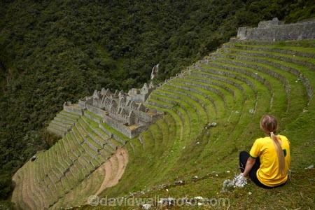 agricultural-terraces;ancient;ancient-culture;archaeology;attraction;building;buildings;Camino-Inca;Camino-Inka;Classic-Inca-Trail;crop-terraces;cultivation-terraces;Cusco-Region;destination;female;females;girl;girls;growing-terraces;heritage;hiker;hikers;historic;historic-building;historic-buildings;historical;historical-building;historical-buildings;history;horticultural-terraces;Inca;Inca-Citadel;Inca-City;Inca-Path;Inca-Ruins;Inca-Trail;Inca-trek;Inka;Latin-America;lost-city;Machupicchu-District;model-released;MR;old;people;person;Peru;Republic-of-Peru;retaining-wall;retaining-walls;ruin;ruins;Sacred-Valley;Sacred-Valley-of-the-Incas;South-America;stepped;Sth-America;teenager;teenagers;terrace;terraced;terraces;tourism;tourist;tourist-attraction;tourists;tradition;traditional;travel;Urubamba;Urubamba-Province;visitors;walker;walkers;Winay-Wayna;Winaywayna;Wiñay-Wayna;woman