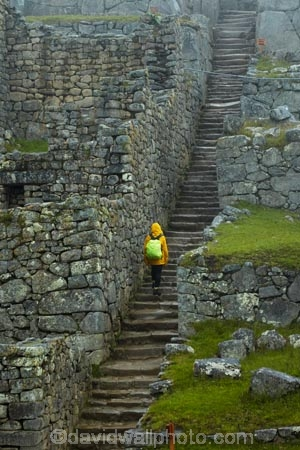 ancient;ancient-culture;archaeology;attraction;block;blocks;building;buildings;Camino-Inca;Camino-Inka;Cusco-Region;destination;heritage;historic;historic-building;historic-buildings;historical;historical-building;historical-buildings;history;Inca;Inca-Citadel;Inca-City;Inca-masonry;Inca-Ruins;Inca-site;inca-stone-wall;Inca-Stonework;Inca-Trail;Inka;Latin-America;lost-city;Machu-Picchu;Machu-Pichu;Machupicchu-District;main-stairway;masonry;model-release;model-released;MR;old;people;person;Peru;rain;raining;rainy;Republic-of-Peru;rock-wall;ruin;ruins;Sacred-Valley;Sacred-Valley-of-the-Incas;South-America;Sth-America;stone-block;stone-blocks;stone-masonry;stone-wall;stone-walls;tourism;tourist;tourist-attraction;tourist-site;tourist-sites;tourists;tradition;traditional;UN-world-heritage-area;UN-world-heritage-site;UNESCO-World-Heritage-area;UNESCO-World-Heritage-Site;united-nations-world-heritage-area;united-nations-world-heritage-site;Urubamba-Province;Urubamba-Valley;visitors;wet;world-heritage;world-heritage-area;world-heritage-areas;World-Heritage-Park;World-Heritage-site;World-Heritage-Sites