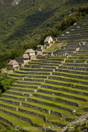 agricultural-terraces;ancient;ancient-culture;archaeology;attraction;building;buildings;Camino-Inca;Camino-Inka;central-terraces;crop-terraces;cultivation-terraces;Cusco-Region;destination;geometric;growing-terraces;heritage;historic;historic-building;historic-buildings;historical;historical-building;historical-buildings;history;horticultural-terraces;Inca;Inca-Citadel;Inca-City;Inca-Ruins;Inca-Trail;Inka;Latin-America;lost-city;Lower-agricultural-sector;Machu-Picchu;Machu-Pichu;Machupicchu-District;old;pattern;patterns;people;person;Peru;Republic-of-Peru;retaining-wall;retaining-walls;ruin;ruins;Sacred-Valley;Sacred-Valley-of-the-Incas;South-America;stepped;Sth-America;terrace;terraced;terraces;terracing;tourism;tourist;tourist-attraction;tourist-site;tourist-sites;tourists;tradition;traditional;travel;UN-world-heritage-area;UN-world-heritage-site;UNESCO-World-Heritage-area;UNESCO-World-Heritage-Site;united-nations-world-heritage-area;united-nations-world-heritage-site;Urubamba-Province;Urubamba-Valley;visitors;world-heritage;world-heritage-area;world-heritage-areas;World-Heritage-Park;World-Heritage-site;World-Heritage-Sites