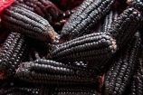 black-corn;black-incan-corn;black-maize;Central-Market;cob;cobs;commerce;commercial;Cusco;Cuzco;farmer-market;farmer-markets;farmers-market;farmers-markets;farmers-market;farmers-markets;food;food-market;food-markets;food-stall;food-stalls;Kculli-corn;Kculli-Strains;Kulli-corn;Latin-America;market;market-day;market-days;market-place;market_place;marketplace;markets;Mercardo-Central;Mercardo-Central-de-San-Pedro;Peru;produce;produce-market;produce-markets;product;products;purple-corn;Republic-of-Peru;retail;retailer;retailers;San-Pedro;San-Pedro-Food-Market;San-Pedro-Market;San-Pedro-Produce-Market;shop;shopping;shops;South-America;stall;stalls;steet-scene;Sth-America;street-scenes