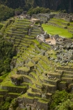 agricultural-terraces;ancient;ancient-culture;archaeology;attraction;building;buildings;Camino-Inca;Camino-Inka;crop-terraces;cultivation-terraces;Cusco-Region;destination;growing-terraces;heritage;historic;historic-building;historic-buildings;historical;historical-building;historical-buildings;history;horticultural-terraces;Inca;Inca-Citadel;Inca-City;Inca-Ruins;Inca-Trail;Inka;Latin-America;lost-city;Machu-Picchu;Machu-Pichu;Machupicchu-District;old;Peru;Republic-of-Peru;retaining-wall;retaining-walls;ruin;ruins;Sacred-Valley;Sacred-Valley-of-the-Incas;seven-wonders;seven-wonders-of-the-world;South-America;stepped;Sth-America;terrace;terraced;terraces;terracing;tourism;tourist-attraction;tourist-site;tourist-sites;tradition;traditional;travel;UN-world-heritage-area;UN-world-heritage-site;UNESCO-World-Heritage-area;UNESCO-World-Heritage-Site;united-nations-world-heritage-area;united-nations-world-heritage-site;Urubamba-Province;Urubamba-Valley;wonders-of-the-world;world-heritage;world-heritage-area;world-heritage-areas;World-Heritage-Park;World-Heritage-site;World-Heritage-Sites