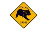 australasia;Australasian;Australia;australian;Koala;Koala-Cross;Koala-Crossing;Koala-Crossing-Sign;Koala-Warning-Sign;koalas;Road;road-sign;road-signs;road_sign;road_signs;roads;roadsign;roadsigns;sign;signs;symbol;symbols;tranportation;transport;travel;warn;yellow;cutout