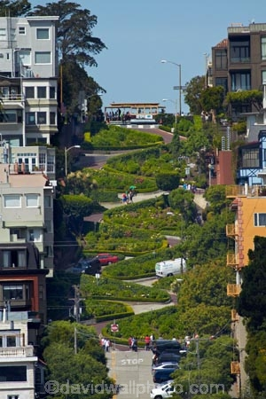 America;American;Bay-Area;CA;California;Crookedest-Street;crookedest-street-in-the-world;hairpin-bend;hairpin-bends;hairpin-corner;hairpin-corners;hairpin-turn;hairpin-turns;Lombard-St;Lombard-Street;Russian-Hill;San-Francisco;States;steep;steep-street;steep-streets;switchback;switchback-road;switchback-roads;switchbacks;U.S.A;United-States;United-States-of-America;USA;West-Coast;West-United-States;West-US;West-USA;Western-United-States;Western-US;Western-USA;world's-crookedest-street;zig-zag;zig-zag-road;zig-zag-roads;zig-zag-street;zig-zag-streets;zig-zags;zig_zag;zig_zag-road;zig_zag-roads;zig_zag-street;zig_zag-streets;zig_zags;zigzag;zigzag-road;zigzag-roads;zigzag-street;zigzag-streets;zigzags