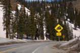 10,640-ft;3243-m;America;American-Southwest;CO;Coal-Bank-Pass;cold;Colorado;Colorado-Plateau;Colorado-Plateau-Province;Colorado-Scenic-and-Historic-Byway-System;forest;forests;Million-Dollar-Highway;mountain-pass;mountain-passes;road-sign;road-signs;Rocky-Mountains;San-Juan-Mountains;San-Juan-National-Forest;San-Juan-Skyway;San-Juan-Skyway-Scenic-Byway;sign;signs;snow;snowy;South-west-United-States;South-west-US;South-west-USA;South-western-United-States;South-western-US;South-western-USA;Southwest-United-States;Southwest-US;Southwest-USA;Southwestern-United-States;Southwestern-US;Southwestern-USA;States;summit;summits;the-Southwest;U.S.-Highway-550;U.S.A;United-States;United-States-of-America;US-550;USA;warning-sign;warning-signs;winter;wood;woods