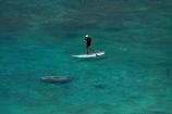 America;American;Hawaii;Hawaiian-Islands;HI;holiday;holidays;Honolulu;hot;Island-of-Oahu;Oahu;Oahu;Oahu-Island;Pacific;people;person;stand-up-paddle-boarder;stand-up-paddle-boarders;stand-up-paddle-boarding;Stand-up-paddle-surfing;stand-up-paddleboarder;stand-up-paddleboarders;stand-up-paddleboarding;State-of-Hawaii;States;summer;SUP;surfer;surfers;surfing;tourism;tourist;tourists;tropical;tropical-beach;tropical-beaches;tropical-island;tropical-islands;tropics;U.S.A;United-States;United-States-of-America;USA;vacation;vacations;visitor;visitors;Waikiki;Waikiki-Bay;Waikiki-Beach