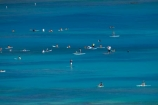 America;American;Hawaii;Hawaiian-Islands;HI;Honolulu;Island-of-Oahu;Oahu;Oahu;Oahu-Island;Pacific;people;person;stand-up-paddle-boarder;stand-up-paddle-boarders;stand-up-paddle-boarding;Stand-up-paddle-surfing;stand-up-paddleboarder;stand-up-paddleboarders;stand-up-paddleboarding;State-of-Hawaii;States;SUP;surfer;surfers;surfing;tourism;tourist;tourists;U.S.A;United-States;United-States-of-America;USA;visitor;visitors;Waikiki;Waikiki-Bay;Waikiki-Beach