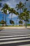 America;American;crossing-crossings;Hawaii;Hawaiian-Islands;HI;holiday;holidays;Honolulu;hot;Island-of-Oahu;Kalakaua-Ave;Kalakaua-Avenue;Oahu;Oahu;Oahu-Island;Pacific;palm;palm-tree;palm-trees;palms;pedestrian-crossing;pedestrian-crossings;State-of-Hawaii;States;summer;tropical;tropical-beach;tropical-beaches;tropical-island;tropical-islands;tropics;U.S.A;United-States;United-States-of-America;USA;vacation;vacations;Waikiki;Waikiki-Beach;zebra-crossing;zebra-crossings