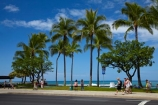 America;American;Hawaii;Hawaiian-Islands;HI;holiday;holidays;Honolulu;hot;Island-of-Oahu;Kalakaua-Ave;Kalakaua-Avenue;Oahu;Oahu;Oahu-Island;Pacific;palm;palm-tree;palm-trees;palms;people;person;State-of-Hawaii;States;summer;tourism;tourist;tourists;tropical;tropical-beach;tropical-beaches;tropical-island;tropical-islands;tropics;U.S.A;United-States;United-States-of-America;USA;vacation;vacations;visitor;visitors;Waikiki;Waikiki-Beach