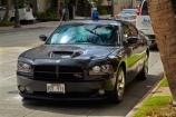 America;American;Dodge;Dodge-Charger;Dodge-Chargers;Dodge-RT-Charger;Dodges;emergencies;emergency;emergency-vehicle;emergency-vehicles;Hawaii;Hawaiian-Islands;HI;Honolulu;Honolulu-Police;Honolulu-Police-Department;Honolulu-Police-Dept;Island-of-Oahu;Oahu;Oahu;Oahu-Island;Pacific;police;police-car;police-cars;rt-charger;State-of-Hawaii;States;street;street-scene;street-scenes;streets;U.S.A;United-States;United-States-of-America;USA;Waikiki