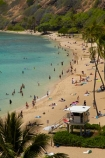 America;American;beach;beaches;coast;coastal;coastline;coastlines;coral-reef;coral-reefs;corals;dive-site;dive-sites;diving;ecosystem;environment;Hanauma;Hanauma-Bay;Hanauma-Bay-Beach;Hanauma-Bay-Nature-Preserve;Hanauma-Bay-Nature-Reserve;Hanauma-Bay-State-Park;Hanauma-Beach;Hanauma-Crater;Hawaii;Hawaiian-Islands;HI;Island-of-Oahu;leisure;marine;marine-environment;marine-life;marinelife;Oahu;Oahu;Oahu-Island;Ocean;oceanlife;Oceans;Outdoor;Outdoors;Outside;Pacific;palm;palm-tree;palm-trees;palms;people;person;Persons;Recreation;reef;reefs;sand;sandy;sea;sealife;seas;snorkelers;snorkeling;snorkellers;snorkelling;snorleler;snorleller;State-of-Hawaii;States;tourisim;tourism;tourist;tourists;tropical-beach;tropical-beaches;tropical-island;tropical-islands;tropical-reef;tropical-reefs;U.S.A;United-States;United-States-of-America;USA;visitor;volcanic-crater