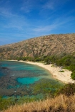 America;American;beach;beaches;coast;coastal;coastline;coastlines;coral-reef;coral-reefs;corals;dive-site;dive-sites;diving;ecosystem;environment;Hanauma;Hanauma-Bay;Hanauma-Bay-Beach;Hanauma-Bay-Nature-Preserve;Hanauma-Bay-Nature-Reserve;Hanauma-Bay-State-Park;Hanauma-Beach;Hanauma-Crater;Hawaii;Hawaiian-Islands;HI;Island-of-Oahu;leisure;marine;marine-environment;marine-life;marinelife;Oahu;Oahu;Oahu-Island;Ocean;oceanlife;Oceans;Outdoor;Outdoors;Outside;Pacific;people;person;Persons;Recreation;reef;reefs;sand;sandy;sea;seas;State-of-Hawaii;States;tourisim;tourism;tourist;tourists;tropical-beach;tropical-beaches;tropical-island;tropical-islands;tropical-reef;tropical-reefs;U.S.A;United-States;United-States-of-America;USA;visitor;volcanic-crater