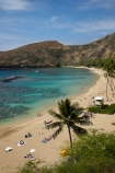 America;American;beach;beaches;coast;coastal;coastline;coastlines;coral-reef;coral-reefs;corals;dive-site;dive-sites;diving;ecosystem;environment;Hanauma;Hanauma-Bay;Hanauma-Bay-Beach;Hanauma-Bay-Nature-Preserve;Hanauma-Bay-Nature-Reserve;Hanauma-Bay-State-Park;Hanauma-Beach;Hanauma-Crater;Hawaii;Hawaiian-Islands;HI;Island-of-Oahu;leisure;marine;marine-environment;marine-life;marinelife;Oahu;Oahu;Oahu-Island;Ocean;oceanlife;Oceans;Outdoor;Outdoors;Outside;Pacific;palm;palm-tree;palm-trees;palms;people;person;Persons;Recreation;reef;reefs;sand;sandy;sea;seas;State-of-Hawaii;States;tourisim;tourism;tourist;tourists;tropical-beach;tropical-beaches;tropical-island;tropical-islands;tropical-reef;tropical-reefs;U.S.A;United-States;United-States-of-America;USA;visitor;volcanic-crater