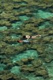 America;American;coral-reef;coral-reefs;corals;dive-site;dive-sites;diving;ecosystem;environment;Hanauma;Hanauma-Bay;Hanauma-Bay-Nature-Preserve;Hanauma-Bay-Nature-Reserve;Hanauma-Bay-State-Park;Hanauma-Crater;Hawaii;Hawaiian-Islands;HI;Island-of-Oahu;leisure;marine;marine-environment;marine-life;marinelife;Oahu;Oahu;Oahu-Island;Ocean;oceanlife;Oceans;Outdoor;Outdoors;Outside;Pacific;people;person;Persons;Recreation;reef;reefs;sea;sealife;seas;snorkelers;snorkeling;snorkellers;snorkelling;snorleler;snorleller;State-of-Hawaii;States;tourisim;tourism;tourist;tourists;tropical-beach;tropical-beaches;tropical-island;tropical-islands;tropical-reef;tropical-reefs;U.S.A;United-States;United-States-of-America;USA;visitor