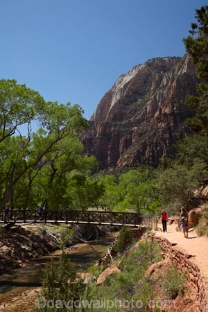 America;American-Southwest;Angels-Landing-track;Angels-Landing-trail;Angel's-Landing-track;Angel's-Landing-trail;bridge;bridges;canyon;canyons;foot-bridge;foot-bridges;footbridge;footbridges;hiker;hikers;hiking-path;hiking-paths;hiking-track;hiking-tracks;hiking-trail;hiking-trails;national-parks;path;paths;pathway;pathways;pedestrian-bridge;pedestrian-bridges;people;person;river;rivers;route;routes;South-west-United-States;South-west-US;South-west-USA;South-western-United-States;South-western-US;South-western-USA;Southwest-United-States;Southwest-US;Southwest-USA;Southwestern-United-States;Southwestern-US;Southwestern-USA;States;the-Southwest;tourism;tourist;tourists;track;tracks;trail;trails;tramping-track;tramping-tracks;tramping-trail;tramping-trails;U.S.A;United-States;United-States-of-America;USA;UT;Utah;Virgin-River;walker;walkers;walking-path;walking-paths;walking-track;walking-tracks;walking-trail;walking-trails;walkway;walkways;West-Rim-Track;West-Rim-Trail;Zion;Zion-Canyon;Zion-N.P.;Zion-National-Park;Zion-NP