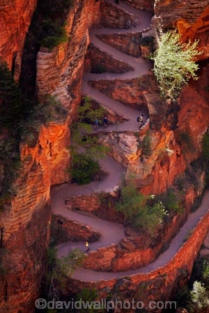 America;American-Southwest;Angels-Landing;Angels-Landing-track;Angels-Landing-trail;Angel's-Landing;Angel's-Landing-track;Angel's-Landing-trail;bluff;bluffs;cliff;cliffs;hairpin-bend;hairpin-bends;hairpin-corner;hairpin-corners;hiker;hikers;hiking-path;hiking-paths;hiking-track;hiking-tracks;hiking-trail;hiking-trails;national-park;national-parks;path;paths;pathway;pathways;people;person;Refrigerator-Canyon;route;routes;South-west-United-States;South-west-US;South-west-USA;South-western-United-States;South-western-US;South-western-USA;Southwest-United-States;Southwest-US;Southwest-USA;Southwestern-United-States;Southwestern-US;Southwestern-USA;States;steep;switchback;switchback-track;switchback-tracks;switchbacks;the-Southwest;tourism;tourist;tourists;track;tracks;trail;trails;tramping-track;tramping-tracks;tramping-trail;tramping-trails;U.S.A;United-States;United-States-of-America;USA;UT;Utah;walker;walkers;walking-path;walking-paths;walking-track;walking-tracks;walking-trail;walking-trails;walkway;walkways;Walters-Wiggles;Walters-Wiggles-zigzag;Walters-Wiggles;Walters-Wiggles-zigzag;Walter's-Wiggles;West-Rim-Track;West-Rim-Trail;zig-zag;zig-zag-trail;zig-zag-trails;zig-zags;zig_zag-path;zig_zag-paths;zig_zags;zigzag-track;zigzag-tracks;zigzags;Zion;Zion-N.P.;Zion-National-Park;Zion-NP