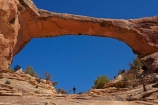 America;American-Southwest;archway;archways;Armstrong-Canyon;Cedar-Mesa-Formation;female;females;geological;geology;natural-arch;Natural-Arches;natural-bridge;natural-bridges;Natural-Bridges-N.M.;Natural-Bridges-National-Monument;natural-geological-formation;natural-geological-formations;Natural-Rock-Arch;natural-rock-arches;natural-rock-archs;natural-rock-bridge;natural-rock-bridges;Owachomo;Owachomo-Bridge;Owachomo-Natural-Bridge;people;Permian-sandstone;person;rock;rock-arch;rock-arches;rock-bridge;rock-bridges;rock-formation;rock-formations;rock-outcrop;rock-outcrops;rock-tor;rock-torr;rock-torrs;rock-tors;rocks;Sandstone;South-west-United-States;South-west-US;South-west-USA;South-western-United-States;South-western-US;South-western-USA;Southwest-United-States;Southwest-US;Southwest-USA;Southwestern-United-States;Southwestern-US;Southwestern-USA;States;stone;the-Southwest;tourism;tourist;tourists;U.S.-National-Monument;U.S.-National-Monuments;U.S.A;United-States;United-States-of-America;unusual-natural-feature;unusual-natural-features;unusual-natural-formation;unusual-natural-formations;USA;UT;Utah;visitor;visitors;wilderness;wilderness-area;wilderness-areas;woman;women