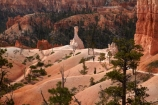 America;American-Southwest;badland;badlands;Bryce-Amphitheater;Bryce-Amphitheatre;Bryce-Canyon;Bryce-Canyon-N.P.;Bryce-Canyon-National-Park;Bryce-Canyon-NP;clay;column;columns;earth-pyramid;earth-pyramids;eroded;erosion;fairy-chimney;fairy-chimneys;formation;formations;geological;geology;hiker;hikers;hiking-path;hiking-paths;hiking-track;hiking-tracks;hiking-trail;hiking-trails;hoodoo;hoodoos;layer;layers;national-park;national-parks;natural-geological-formation;natural-geological-formations;natural-tower;natural-towers;North-America;path;paths;pathway;pathways;Paunsaugunt-Plateau;people;person;pillar;pillars;pinnacle;pinnacles;Queens-Garden-Path;Queens-Garden-Trackl;Queens-Garden-Trail;Queens-Garden-walk;Queens-Garden-Path;Queens-Garden-Track;Queens-Garden-Trail;Queens-Garden-walk;rock;rock-chimney;rock-chimneys;rock-column;rock-columns;rock-formation;rock-formations;rock-pillar;rock-pillars;rock-pinnacle;rock-pinnacles;rock-spire;rock-spires;rock-tower;rock-towers;rocks;route;routes;Sandstone;South-west-United-States;South-west-US;South-west-USA;South-western-United-States;South-western-US;South-western-USA;Southwest-United-States;Southwest-US;Southwest-USA;Southwestern-United-States;Southwestern-US;Southwestern-USA;States;stone;tent-rock;tent-rocks;the-Southwest;tourism;tourist;tourists;track;tracks;trail;trails;tramping-track;tramping-tracks;tramping-trail;tramping-trails;U.S.A;United-States;United-States-of-America;unusual-natural-feature;unusual-natural-features;unusual-natural-formation;unusual-natural-formations;USA;UT;Utah;walker;walkers;walking-path;walking-paths;walking-track;walking-tracks;walking-trail;walking-trails;walkway;walkways;weathered;weathering;wilderness;wilderness-area;wilderness-areas