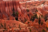 America;American-Southwest;badland;badlands;Bryce-Amphitheater;Bryce-Amphitheatre;Bryce-Canyon;Bryce-Canyon-N.P.;Bryce-Canyon-National-Park;Bryce-Canyon-NP;clay;column;columns;earth-pyramid;earth-pyramids;eroded;erosion;fairy-chimney;fairy-chimneys;formation;formations;geological;geology;hiking-path;hiking-paths;hiking-track;hiking-tracks;hiking-trail;hiking-trails;hoodoo;hoodoos;layer;layers;lookout;lookouts;national-park;national-parks;natural-geological-formation;natural-geological-formations;natural-tower;natural-towers;North-America;overlook;path;paths;pathway;pathways;Paunsaugunt-Plateau;pillar;pillars;pinnacle;pinnacles;Queens-Garden-Path;Queens-Garden-Trackl;Queens-Garden-Trail;Queens-Garden-walk;Queens-Garden-Path;Queens-Garden-Track;Queens-Garden-Trail;Queens-Garden-walk;rock;rock-chimney;rock-chimneys;rock-column;rock-columns;rock-formation;rock-formations;rock-pillar;rock-pillars;rock-pinnacle;rock-pinnacles;rock-spire;rock-spires;rock-tower;rock-towers;rocks;route;routes;Sandstone;South-west-United-States;South-west-US;South-west-USA;South-western-United-States;South-western-US;South-western-USA;Southwest-United-States;Southwest-US;Southwest-USA;Southwestern-United-States;Southwestern-US;Southwestern-USA;States;stone;tent-rock;tent-rocks;the-Southwest;track;tracks;trail;trails;tramping-track;tramping-tracks;tramping-trail;tramping-trails;U.S.A;United-States;United-States-of-America;unusual-natural-feature;unusual-natural-features;unusual-natural-formation;unusual-natural-formations;USA;UT;Utah;view;viewpoint;viewpoints;views;walking-path;walking-paths;walking-track;walking-tracks;walking-trail;walking-trails;walkway;walkways;weathered;weathering;wilderness;wilderness-area;wilderness-areas