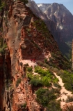 adventure;adventurous;America;American-Southwest;Angels-Landing;Angels-Landing-track;Angels-Landing-trail;Angel's-Landing;Angel's-Landing-track;Angel's-Landing-trail;bluff;bluffs;cliff;cliffs;danger;dangerous;dangerous-hike;dangerous-track;hiker;hikers;hiking-path;hiking-paths;hiking-track;hiking-tracks;hiking-trail;hiking-trails;lookout;lookouts;national-parks;overlook;path;paths;pathway;pathways;people;person;route;routes;Scout-Lookout;Scouts-Lookout;South-west-United-States;South-west-US;South-west-USA;South-western-United-States;South-western-US;South-western-USA;Southwest-United-States;Southwest-US;Southwest-USA;Southwestern-United-States;Southwestern-US;Southwestern-USA;States;the-Southwest;tourism;tourist;tourists;track;tracks;trail;trails;tramping-track;tramping-tracks;tramping-trail;tramping-trails;U.S.A;United-States;United-States-of-America;USA;UT;Utah;view;viewpoint;viewpoints;views;walker;walkers;walking-path;walking-paths;walking-track;walking-tracks;walking-trail;walking-trails;walkway;walkways;Zion;Zion-Canyon;Zion-N.P.;Zion-National-Park;Zion-NP