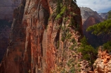 adventure;adventurous;America;American-Southwest;Angels-Landing;Angels-Landing-track;Angels-Landing-trail;Angel's-Landing;Angel's-Landing-track;Angel's-Landing-trail;bluff;bluffs;cliff;cliffs;danger;dangerous;dangerous-hike;dangerous-track;hiker;hikers;hiking-path;hiking-paths;hiking-track;hiking-tracks;hiking-trail;hiking-trails;lookout;lookouts;national-parks;overlook;path;paths;pathway;pathways;people;person;route;routes;Scout-Lookout;South-west-United-States;South-west-US;South-west-USA;South-western-United-States;South-western-US;South-western-USA;Southwest-United-States;Southwest-US;Southwest-USA;Southwestern-United-States;Southwestern-US;Southwestern-USA;States;the-Southwest;tourism;tourist;tourists;track;tracks;trail;trails;tramping-track;tramping-tracks;tramping-trail;tramping-trails;U.S.A;United-States;United-States-of-America;USA;UT;Utah;view;viewpoint;viewpoints;views;walker;walkers;walking-path;walking-paths;walking-track;walking-tracks;walking-trail;walking-trails;walkway;walkways;Zion;Zion-Canyon;Zion-N.P.;Zion-National-Park;Zion-NP