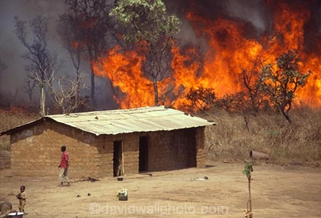 africa;african;africans;banana-palm;build;bush;bush-fire;bush_fire;bushes;bushfire;C.A.R.;CAR;central-african-republic;child;children;construction;cultural;culture;cultures;danger;dangerous;disaster;dwelling;emergency;escape;fire;fires;flame;flames;heat;home;homes;house;houses;housing;hut;huts;jungle;mud;mud-hut;mud_hut;new;orange;poor;poverty;residence;third-world;tradition;traditional;tradtitions;tree;trees;yard