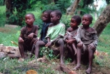 children;child;kid;kids;group;sit;sitting;rest;resting;log;tree;trees;boy;boys;gil;girls;young;rag;rags;poor;poverty;child;children;kid;kids;clasp;clasped;clasped-hands;africa;african;africans;black;ethnic;person;portrait;portraits;tradition;traditional;culture;cultural;tribe;tribal;east-africa;central-africa;democratic-republic-of-congo;congo;zaire;jungle;rainforest;east-africa;central-africa