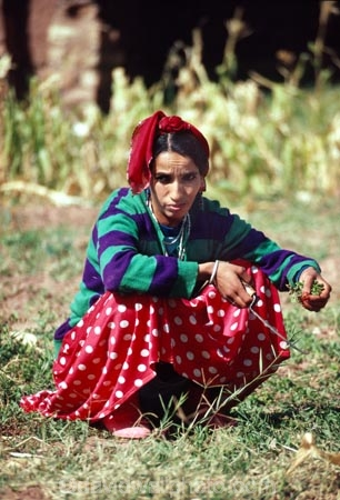 lady;woman;women;female;moroccan;african;atlas;mountains;mint;pick;picking;tradition;traditional;culture;cultural;Ait-Benhaddou-Village;Southern-Atlas-Mountains;Morocco;North-Africa