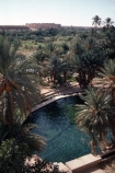 oasis;oases;meskie;morocco;moroccan;sahara;saharan;water;pool;pools;swimming;north-africa;african;retreat;sanctuary;cool;desert
