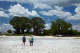 Adansonia;Adansonia-digitata;Africa;alkalii-flat;Baines-Baobabs;Baines-Baobabs;Baines-Baobabs;baobab;baobab-tree;baobab-trees;baobabs;barren;barreness;basin;Botswana;clay-pan;clay-pans;depression;desert;deserts;desolate;dry;dry-lake;dry-lake-bed;dry-lake-beds;dry-lakes;empty;endorheric;endorheric-basin;endorheric-basins;endorheric-lake;extreme;flat;geographic;geography;glare;glary;Kudiakam-Pan;lake;lake-bed;lake-beds;lakes;Makgadikgadi-Pan;Makgadikgadi-Pans;national-park;national-parks;Nxai-Pan-N.P.;Nxai-Pan-National-Park;Nxai-Pan-NP;pan;pans;people;person;playa;playas;remote;remoteness;sabkha;saline;salt;salt-crust;salt-lake;salt-lakes;salt-pan;salt-pans;salt_pan;salt_pans;saltpan;saltpans;salty;Southern-Africa;tourism;tourist;tourists;tree;trees;vast;vlei;white;white-surface;wilderness