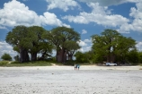 4wd;4wds;4wds;4x4;4x4s;4x4s;Adansonia;Adansonia-digitata;Africa;alkalii-flat;Baines-Baobabs;Baines-Baobabs;Baines-Baobabs;baobab;baobab-tree;baobab-trees;baobabs;barren;barreness;basin;Botswana;Bushlore;Bushlore-4x4;Bushlore-4x4-camper;camper;campers;clay-pan;clay-pans;depression;desert;deserts;desolate;double-cab-hilux;dry;dry-lake;dry-lake-bed;dry-lake-beds;dry-lakes;empty;endorheric;endorheric-basin;endorheric-basins;endorheric-lake;extreme;flat;four-by-four;four-by-fours;four-wheel-drive;four-wheel-drives;geographic;geography;glare;glary;Hilux;hilux-camper;Hiluxes;Kudiakam-Pan;lake;lake-bed;lake-beds;lakes;Makgadikgadi-Pan;Makgadikgadi-Pans;national-park;national-parks;Nxai-Pan-N.P.;Nxai-Pan-National-Park;Nxai-Pan-NP;pan;pans;playa;playas;remote;remoteness;roof-tent;roof-tents;sabkha;saline;salt;salt-crust;salt-lake;salt-lakes;salt-pan;salt-pans;salt_pan;salt_pans;saltpan;saltpans;salty;Southern-Africa;sports-utility-vehicle;sports-utility-vehicles;suv;suvs;Toyota;toyota-camper;Toyota-Hilux;Toyota-Hiluxes;Toyotas;tree;trees;twin-cab-hilux;vast;vehicle;vehicles;vlei;white;white-surface;wilderness