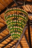 Africa;ale-house;ale-houses;amstel-lager;bar;bars;beer-bottle;Beer-bottle-chandelier;Beer-bottle-chandeliers;beer-bottles;Botswana;bottle-chandelier;bottle-chandeliers;free-house;free-houses;Gweta;hotel;hotels;open_air-bar;Planet-Baobab;pub;public-house;public-houses;pubs;quirky;rustic;shebeen;Southern-Africa;tavern;taverns