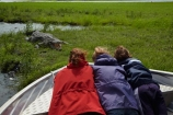 Africa;animal;animals;Botswana;child;children;Chobe-N.P.;Chobe-National-Park;Chobe-NP;Chobe-River;Chobe-River-boat-trip;Chobe-River-boat-trips;Chobe-River-cruise;Chobe-River-cruises;Chobe-Safari-Lodge;croc;crocodile;crocodiles;Crocodylus-niloticus;crocs;danger;dangerous;families;family;family-holiday;family-holidays;holiday;holidays;Kasane;national-park;national-parks;Nile-crocodile;Nile-crocodiles;people;person;reptile;reptiles;scary;Southern-Africa;tourism;tourist;tourists;wildlife