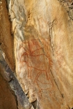 Africa;African;Ancient-art;ancient-rock-drawings;Botswana;Bushman-Painting-Hill;Chobe-N.P.;Chobe-National-Park;Chobe-NP;heritage;historic;Historic-Art;historic-place;historic-places;Historic-Rock-paintings;historical;national-park;national-parks;natural;nature;reserve;reserves;rock-art;rock-art-painting;rock-art-paintings;rock-drawing;rock-drawings;rock-painting;rock-paintings;Savute;Savuti;Savuti-Region;Southern-Africa;tradition;traditional;wild;wilderness;wildlife;wildlife-park;wildlife-parks;wildlife-reserve;wildlife-reserves