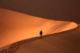 adventure;adventurous;Africa;African;arid;big-dunes;Dead-vlei;Deadvlei;desert;deserts;dry;dune;dunes;giant-dune;giant-dunes;giant-sand-dune;giant-sand-dunes;holiday;holidays;hot;huge-dunes;large-dunes;Namib-Desert;Namib-Naukluft-N.P.;Namib-Naukluft-National-Park;Namib-Naukluft-NP;Namib_Naukluft-N.P.;Namib_Naukluft-National-Park;Namib_Naukluft-NP;Namibia;national-park;national-parks;natural;orange-sand;people;person;remote;remoteness;reserve;reserves;sand;sand-dune;sand-dunes;sand-hill;sand-hills;sand_dune;sand_dunes;sand_hill;sand_hills;sanddune;sanddunes;sandhill;sandhills;sandy;Sossusvlei;Southern-Africa;tourism;tourist;tourists;wilderness