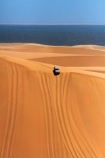 4wd;4wds;4wds;4x4;4x4s;4x4s;Africa;big-dunes;dune;dunes;four-by-four;four-by-fours;four-wheel-drive;four-wheel-drives;giant-dune;giant-dunes;giant-sand-dune;giant-sand-dunes;huge-dunes;large-dunes;Namib-Naukluft-N.P.;Namib-Naukluft-National-Park;Namib-Naukluft-NP;Namib_Naukluft-N.P.;Namib_Naukluft-National-Park;Namib_Naukluft-NP;Namibia;Nissan;Nissan-Patrol;Nissan-Patrols;Nissan-Safari;Nissan-Safaris;Nissans;sand;sand-dune;sand-dunes;sand-hill;sand-hills;sand_dune;sand_dunes;sand_hill;sand_hills;sanddune;sanddunes;sandhill;sandhills;Sandwich-Harbour-4wd-tour;Sandwich-Harbour-4x4-tour;sandy;Southern-Africa;sports-utility-vehicle;sports-utility-vehicles;suv;suvs;vehicle;vehicles;Walfischbai;Walfischbucht;Walvis-Bay;Walvisbaai
