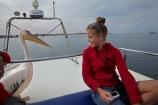 Africa;animal;animals;Atlantic-Coast;Atlantic-Ocean;avian;bird;bird-watching;birds;boat;boat-cruise;boat-cruises;boats;children;coast;coastal;cruiser;cruisers;Eastern-White-Pelican;eco-tourism;eco_tourism;ecotourism;families;family;family-holiday;family-holidays;Fauna;girl;girls;Great-White-Pelican;harbour;harbours;holiday;holidays;launch;launches;Mola-Mola;Mola-Mola-Boat-Tours;Mola-Mola-Safaris;Mola-Mola-Tours;Namibia;Natural;Nature;Ornithology;Pelecanus-onocrotalus;people;person;Rosy-Pelican;Skeleton-Coast;Southern-Africa;tour-boat;tour-boats;tourism;tourist;tourist-boat;tourist-boats;tourists;Walfischbai;Walfischbucht;Walvis-Bay;Walvis-Bay-Harbour;Walvisbaai;White-Pelican;wildlife;young-girl;young-girls