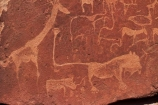 Africa;Ancient-art;ancient-rock-drawings;ancient-rock-etching;ancient-rock-etchings;Bushman-rock-art;Bushman-rock-engravings;Bushman-rock-etchings;Damaraland;giraffe;giraffes;heritage;historic;Historic-Art;historic-place;historic-places;historical;Kunene-District;Kunene-Region;Namib-Desert;Namibia;rock-art;rock-art-painting;rock-art-paintings;rock-drawing;rock-drawings;rock-engraving;rock-engravings;rock-etching;rock-etchings;rock-painting;rock-paintings;San-rock-art;San-rock-etchings;Southern-Africa;tradition;traditional;Twyfelfontein;Twyfelfontein-Rock-Engravings;UN-world-heritage-area;UN-world-heritage-site;UNESCO-World-Heritage-area;UNESCO-World-Heritage-Site;united-nations-world-heritage-area;united-nations-world-heritage-site;world-heritage;world-heritage-area;world-heritage-areas;World-Heritage-Park;World-Heritage-site;World-Heritage-Sites