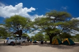 4wd;4wds;4wds;4x4;4x4s;4x4s;Africa;african;big-large;bird-nest;bird-nests;birds-nest;birds-nests;Bushlore;Bushlore-4x4;Bushlore-4x4-camper;Camp;Camp-Ground;Camp-Grounds;Camp-Site;Camp-Sites;camper;campers;campground;campgrounds;Camping;Camping-Area;Camping-Areas;Camping-Ground;Camping-Grounds;Camping-Site;Camping-Sites;Caravan-Park;Caravan-Parks;colonies;colony;communities;community;double-cab-hilux;Etosha-N.P.;Etosha-National-Park;Etosha-NP;flock;four-by-four;four-by-fours;four-wheel-drive;four-wheel-drives;game-park;game-parks;game-reserve;game-reserves;giant-nest;group;Hilux;hilux-camper;Hiluxes;Holiday;Holiday-Park;Holiday-Parks;holidays;home;huge;huge-nest;nambia;Namibia;namibian;national-park;national-parks;nest;nests;Okaukuejo;Okaukuejo-Camp;Okaukuejo-camp-ground;Okaukuejo-camp-site;Okaukuejo-campground;Okaukuejo-campsite;Okaukuejo-Rest-Camp;roof-tent;roof-tents;sociable;Sociable-Weaver-Nest;Sociable-Weavers-Nest;social;Social-Weaver-Nest;Social-Weavers-Nest;Southern-Africa;sports-utility-vehicle;sports-utility-vehicles;suv;suvs;tent;tents;Toyota;toyota-camper;Toyota-Hilux;Toyota-Hiluxes;Toyotas;tree;trees;twin-cab-hilux;vacation;vacations;vehicle;vehicles;weaver;weavers;wildlife-park;wildlife-parks;wildlife-reserve;wildlife-reserves