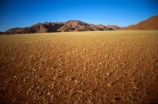 plain;plains;landscape;landscapes;sparse;empty;desert;deserts;deserted;africa;african;wilderness;vast;barren;desolate;desolation;dried;dry;arid;land;ground;outdoor;outdoors;outside;surface;surfaces;growth;growing;grassy;namib;namibia;southern-africa