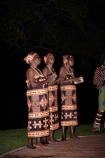 Africa;African;African-women;dancer;dancers;female;Jungle-Junction;people;person;singer;singers;Southern-Africa;Traditional-African-Dancers;Traditional-African-Performance;Traditional-African-Performer;Traditional-African-Performers;tribal-dance;tribal-perdormance;tribal-ritual;V.F.;VF;Vic-Falls;Vic.-Falls;Victoria-Falls;woman;women;Zimbabwe